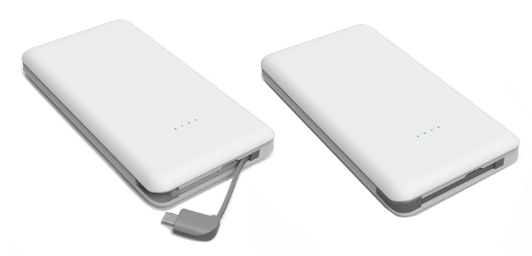 C100 power banks